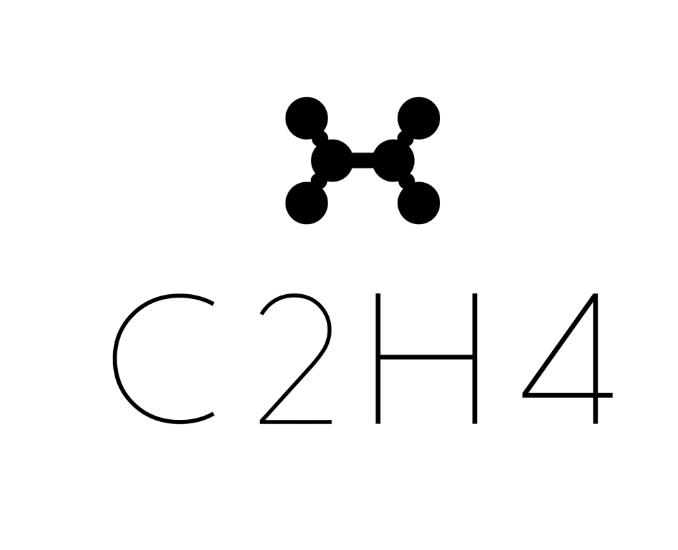 История бренда C2H4