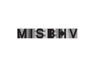 История бренда MISBHV