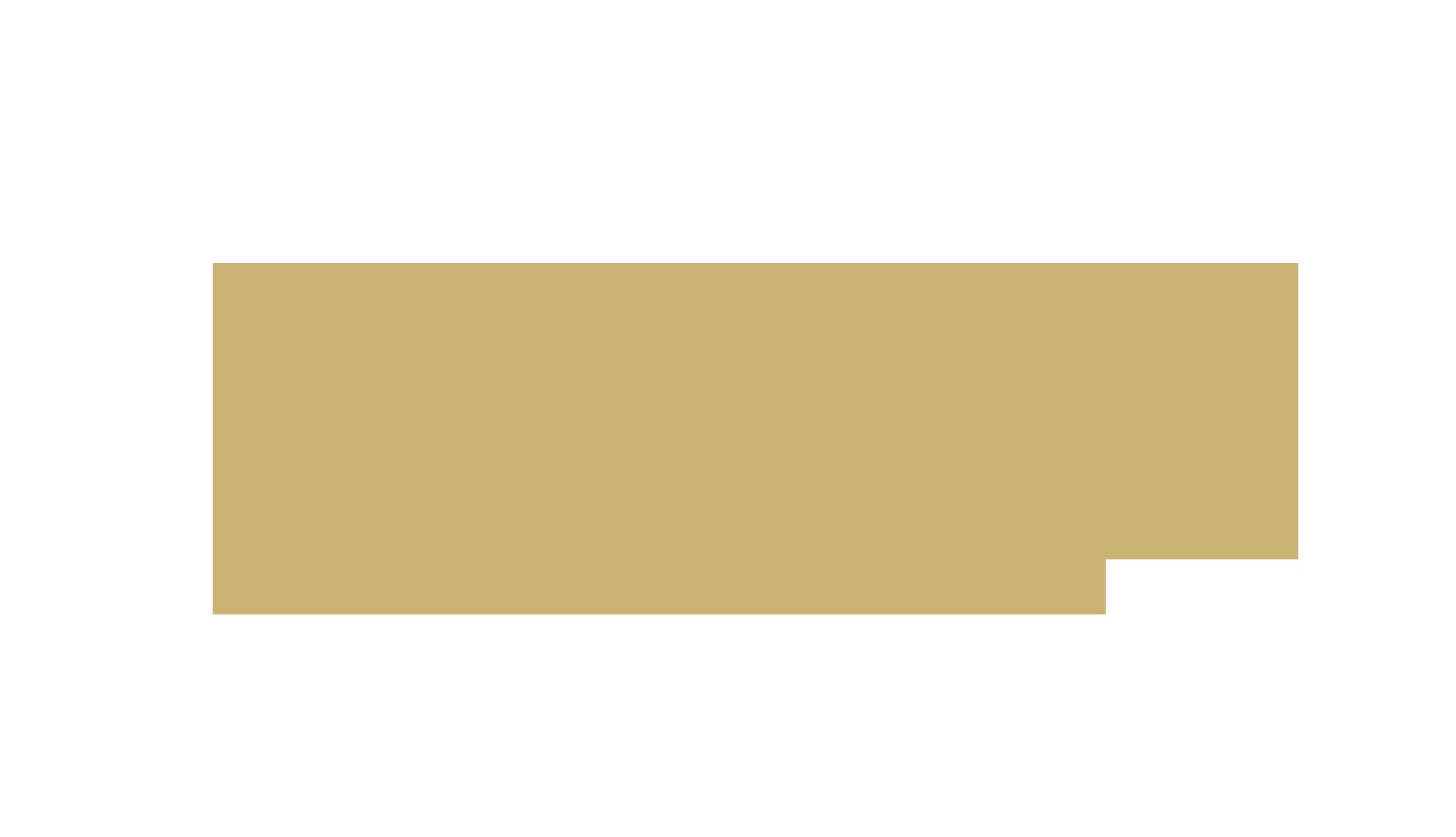 История бренда Goyard
